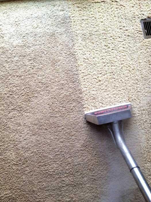 Deep Cleaning Carpet