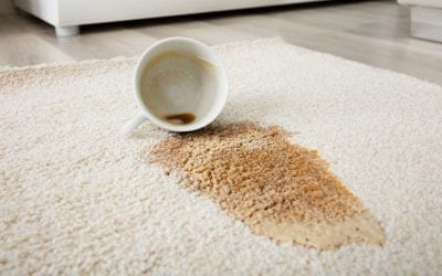 Carpet Care 101: Expert Tips on How to Remove Stains