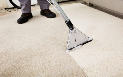 Why You Should Seriously Consider Professional Carpet Cleaning