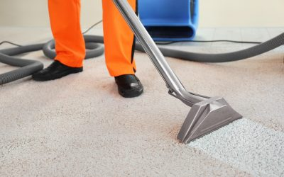 Professional Carpet Cleaning: The Health Benefits Explained