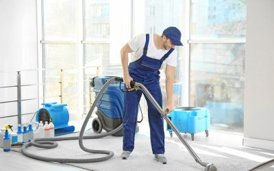 Dealing With Autumn Allergies? Cleaning Your Carpet Can Help!